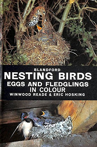 Nesting Birds, Eggs and Fledglings (0713704446) by Reade, Winwood; Hosking, Eric