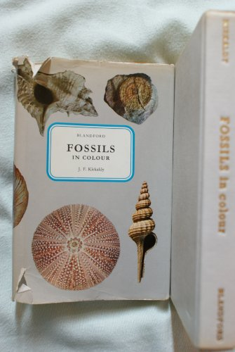 9780713704600: Fossils in Colour (Colour S.)