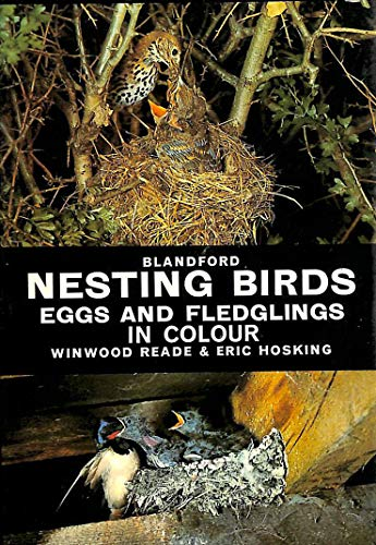 9780713707106: Nesting Birds, Eggs and Fledglings (Colour)