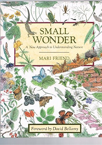 Small Wonder: New Approach to Understanding Nature