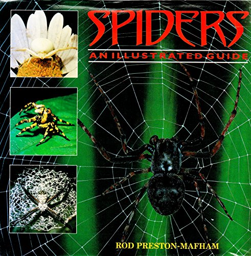 Spiders and Scorpions: An Illustrated Guide: Rod Preston-Mafham