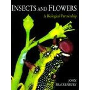 9780713724912: Insects and Flowers: A Biological Partnership