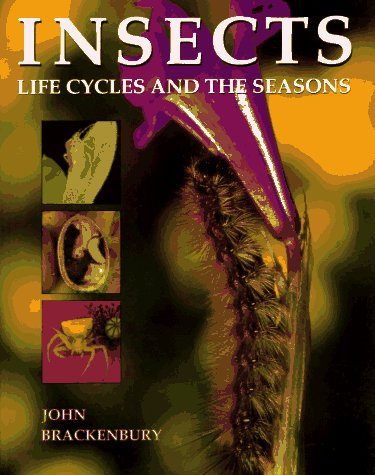 9780713725988: Insects: Life Cycles and the Seasons
