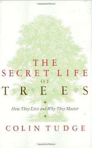 9780713996982: Secret Life of Trees