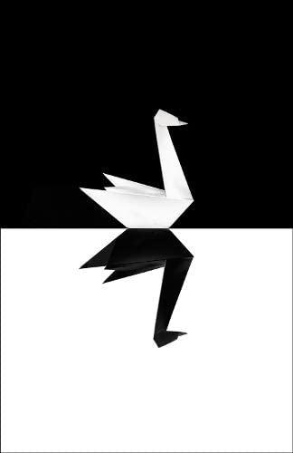 9780713999952: The Black Swan