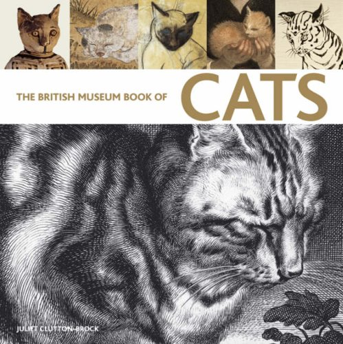 9780714117584: The British Museum Book of Cats: Ancient and Modern