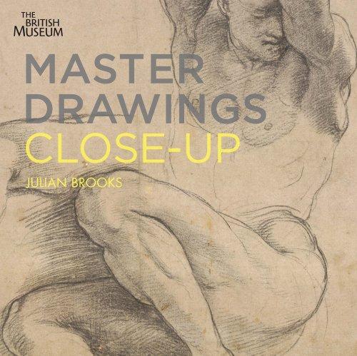 9780714126739: Master Drawings Close Up /Anglais
