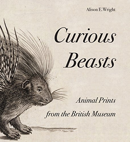 9780714126883: Curious Beasts: Animal Prints from the British Museum (British Museum Department of Prints and Drawings)