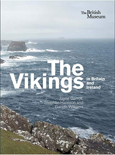 9780714128313: The Vikings in Britain and Ireland /Anglais