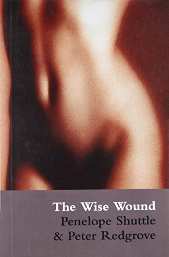 9780714534053: The Wise Wound: menstruation and everywoman