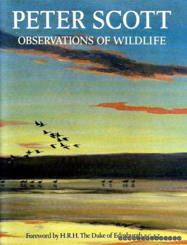 9780714820415: Peter Scott: Observations of Wildlife