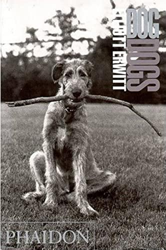 9780714838052: Dog Dogs