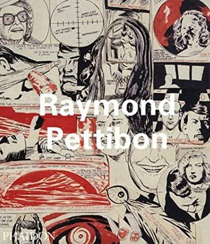 9780714839196: Raymond Pettibon (Contemporary Artists Series)