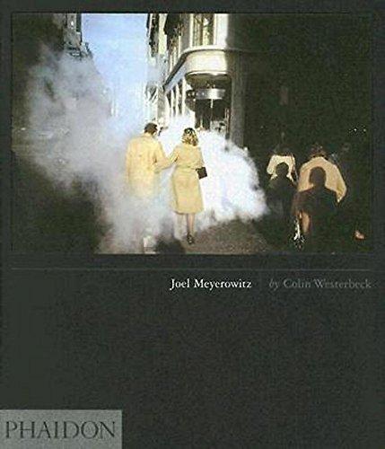 9780714845098: Joel Meyerowitz. Ediz. inglese