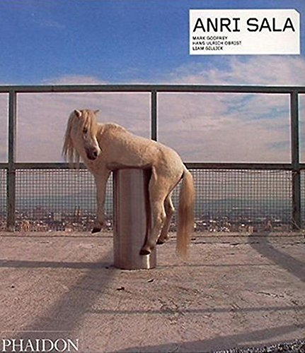 Anri Sala (Contemporary Artists (Phaidon)): Godfrey, Mark; Obrist, Hans Ulrich; Gillick, Liam