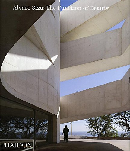 9780714849461: Alvaro Siza: the function of beauty
