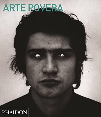 9780714868592: Arte Povera: Abridged Edition