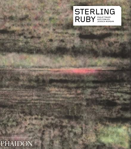 9780714870434: Sterling Ruby (Phaidon Contemporary Artist Series)
