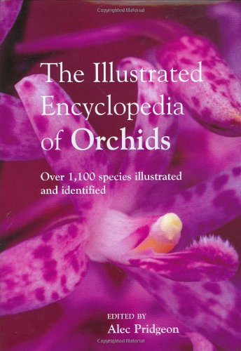 9780715317822: The Encyclopedia of Orchids: Over 1100 Species Illustrated and Identified