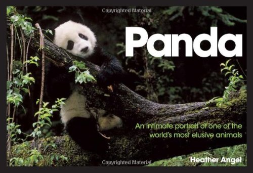9780715328521: Panda: An Intimate Portrait of One of the World's Most Elusive Creatures