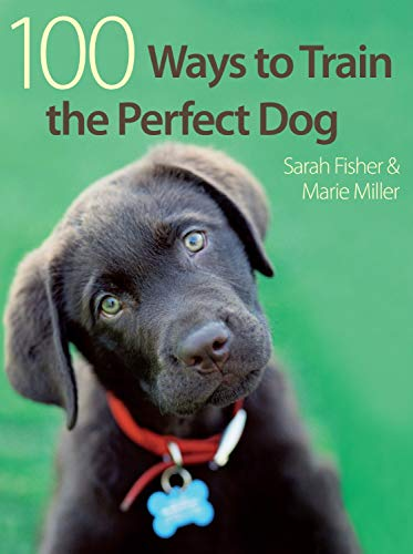 9780715329412: 100 Ways To Train The Perfect Dog