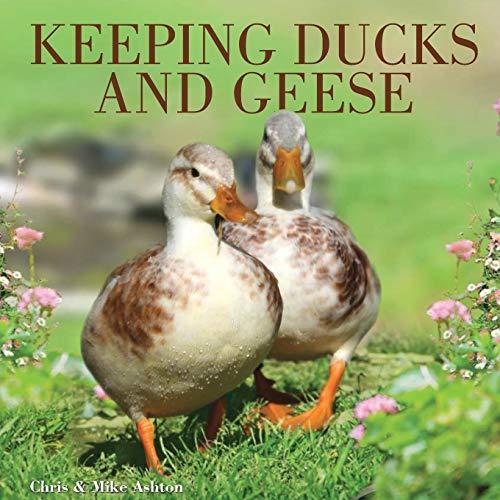 Keeping Ducks & Geese: Chris Ashton; Mike Ashton