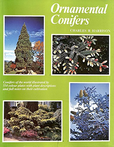 9780715368480: Ornamental Conifers