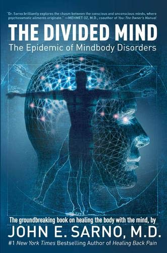9780715637272: The Divided Mind: The Epidemic of Mindbody Disorders
