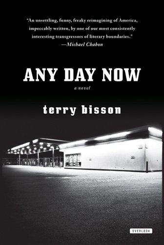 Any Day Now (Paperback)