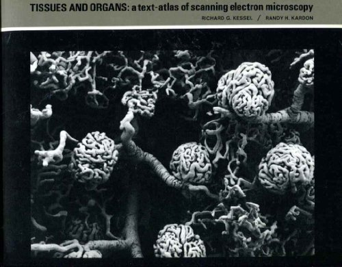 9780716700906: Tissues and Organs: A Text-Atlas of Scanning Electron Microscopy