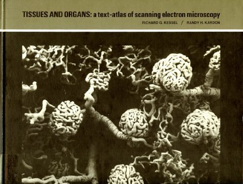 9780716700913: Tissues and Organs: Text Atlas of Scanning Electron Microscopy