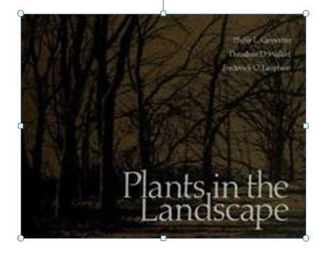 Plants in the Landscape: Frederick O. Lanphear;