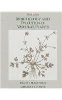 9780716719465: Morphology and Evolution of Vascular Plants (Series of Books in Biology)