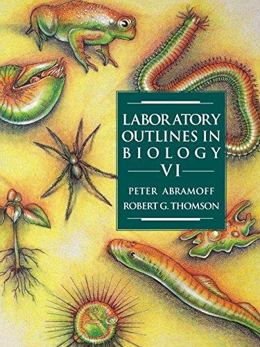 9780716726333: Laboratory Outlines in Biology VI (v. 6)