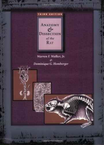 9780716726357: Anatomy & Dissection of the Rat
