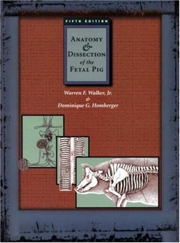 9780716726371: Anatomy and Dissection of the Fetal Pig (Freeman Laboratory Separates in Biology)