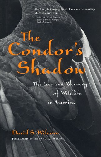 9780716731153: The Condor's Shadow: The Loss and Recovery of Wildlife in America