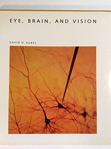 9780716750208: Eye, Brain, and Vision (Scientific American Library)