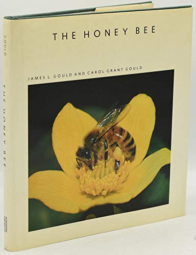 9780716750239: The Honey Bee (Scientific American Library)