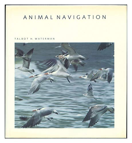 9780716750246: Animal Navigation (Scientific American Library series)