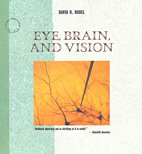 9780716760092: Eye, Brain, and Vision (Scientific American Library)