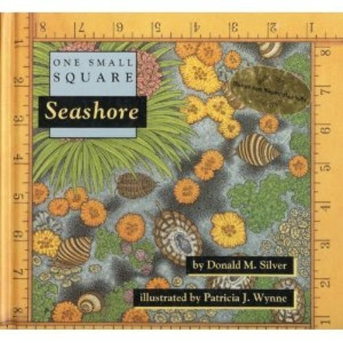 9780716765110: Seashore (One Small Square)
