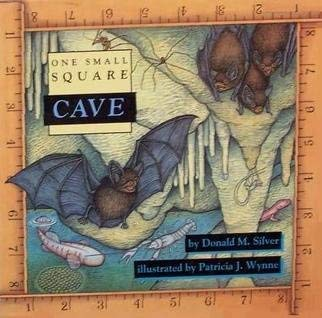9780716765141: Cave (One Small Square)