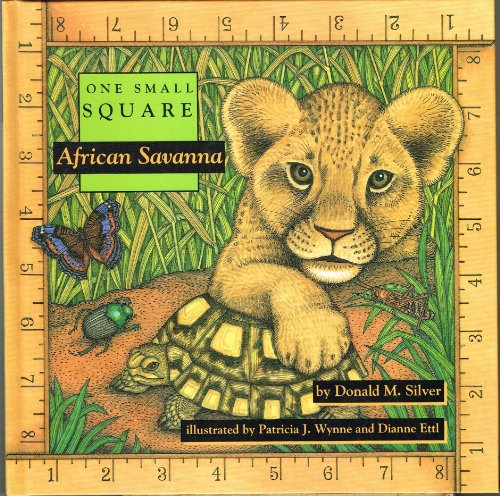 9780716765165: African Savanna (One Small Square)