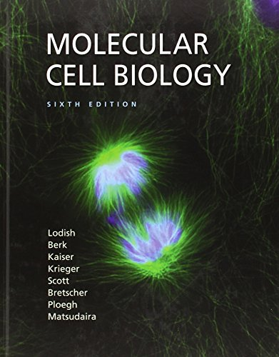 9780716776017: Molecular Cell Biology (Lodish, Molecular Cell Biology)
