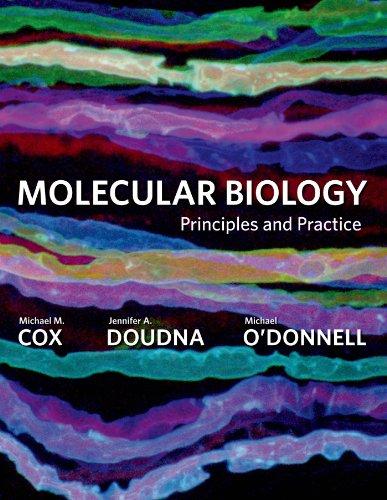 9780716779988: Molecular Biology: Principles and Practice