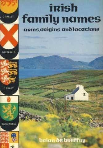 9780717112258: Irish Family Names