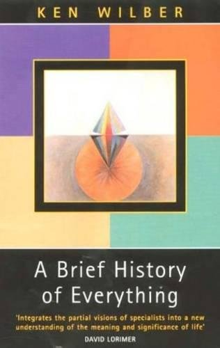 9780717132331: A Brief History of Everything