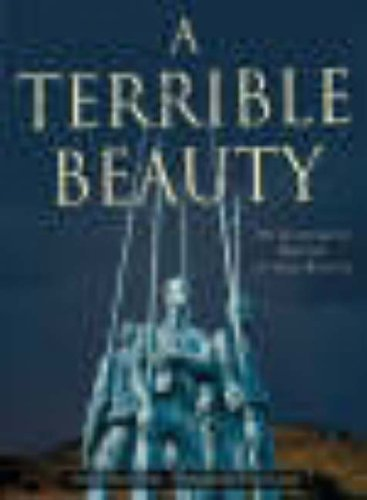 9780717135424: A Terrible Beauty: An Illustrated History of Irish Battles
