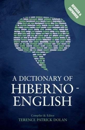 9780717140398: A Dictionary of Hiberno-English